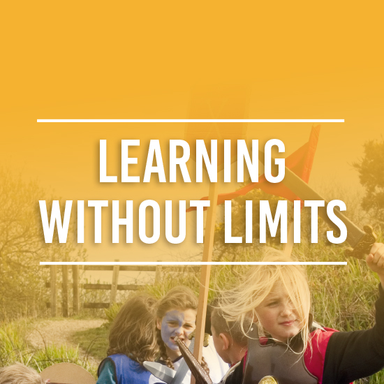 Learning without Limits Image Button